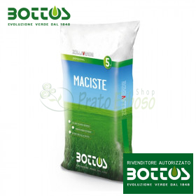 Maciste - Seeds for lawn 5 Kg