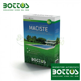 Maciste - Seeds for lawn-1 Kg