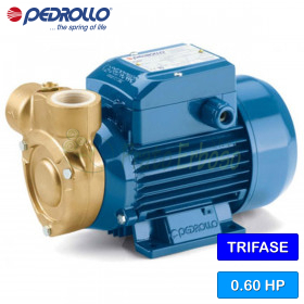 PQ 81-Bs - electric Pump, impeller device, three-phase