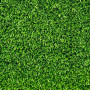 40 square meters of lawn that is ready in rolls