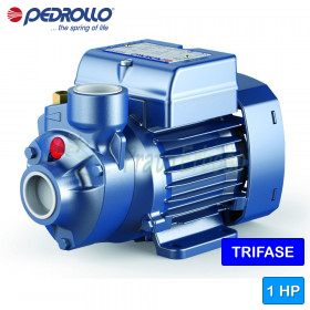 PK 80 electric Pump with the impeller device, three-phase