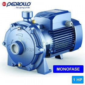 2CPm 25/130N - centrifugal electric Pump twin-impeller single phase