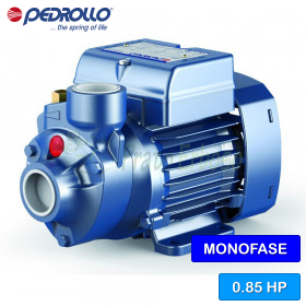PKm 70 electric Pump with impeller device single phase
