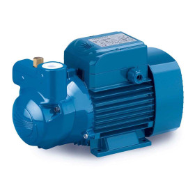 CKR 80-E - electric Pump, self-Priming liquid-ring three-phase