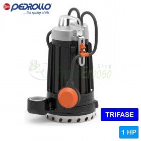 DC 10 - electric Pump in cast iron for clean water three-phase