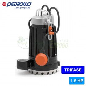 DC 30 - the electric Pump in cast iron for clean water