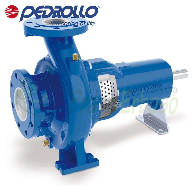 FG-40/125A - centrifugal Pump normalized support