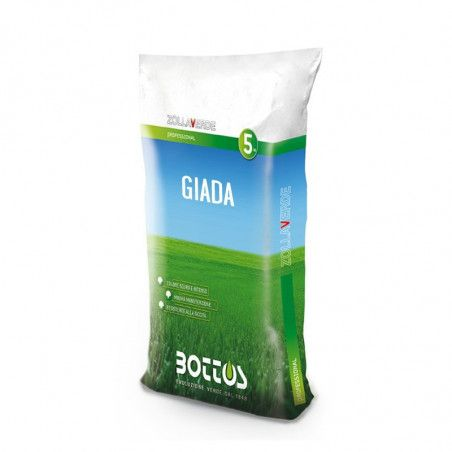 Jade - Seeds for lawn of 5 Kg