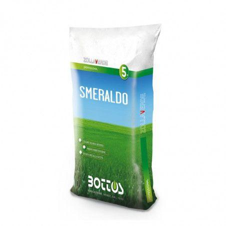 Emerald - Seeds for lawn of 5 Kg