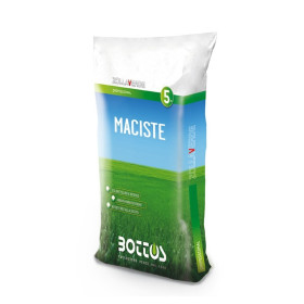 Maciste - Seeds for lawn of 5 Kg