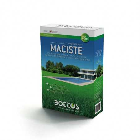 Maciste - Seeds for lawn of 1 Kg