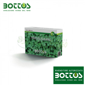 Clover Nano - Seeds for lawn 500 g
