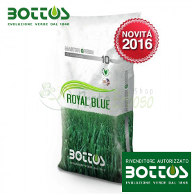 Royal Blue Plus - Seeds for lawn of 10 Kg