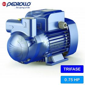 CK 80 - electric Pump, self-Priming liquid-ring three-phase