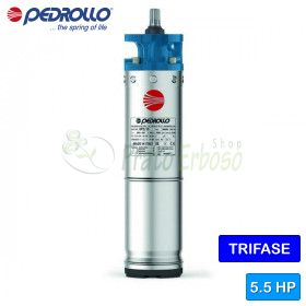 "6PD/5.5 - Motor rewindable 6"" 5.5 HP tre faza"