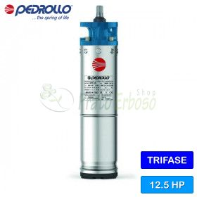 "6PD/12.5 - Motor retractable 6"" 12.5 HP tre faza"
