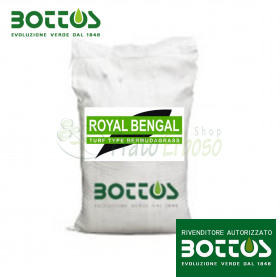 Royal Bengal wheatgrass - Seeds for lawn of 5 Kg