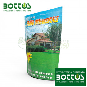 Ornamental lawn - Seeds for lawn of 100 g