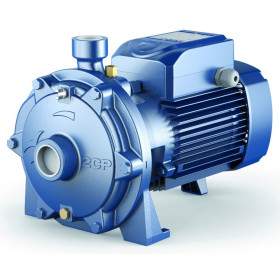 2CPm 25/16C - centrifugal electric Pump twin-impeller single phase