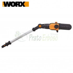 WA0307 - Telescopic pole pruner