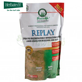 Replay - 1.2 Kg lawn seeds