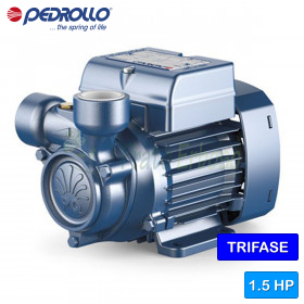 PQ 100 - Pump with the impeller device, three-phase