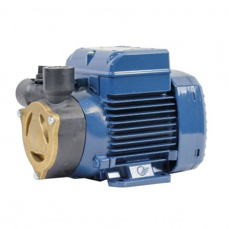 PQAm 60 electric Pump with impeller device single phase